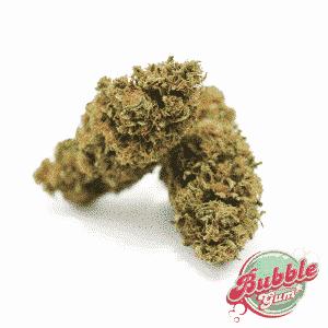 bubble gum marijuana light