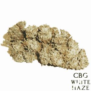 cbg white haze iperhemp