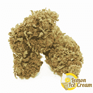 lemon ice cream cannabislight