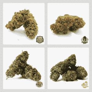 kit gold cannabis light