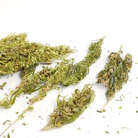 easyjoint blend tripla effe marijuana light