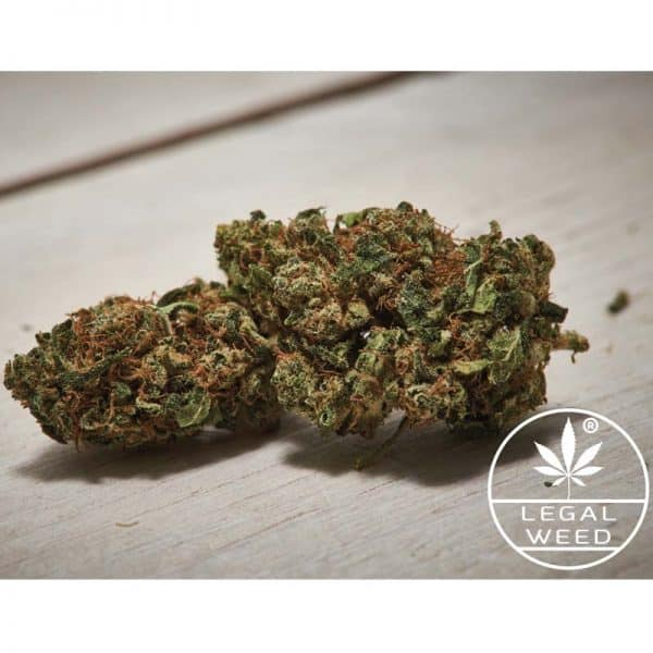 new hope legalweed