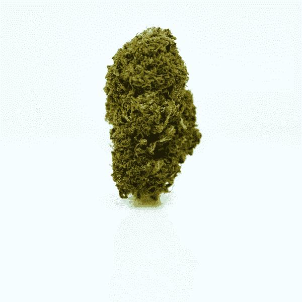 skunk cannabis light bulldog