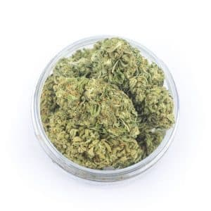 easyjoint seedless cbd