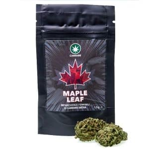maple leaf cannabe cannabis light