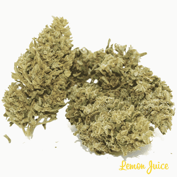 lemon juice 2