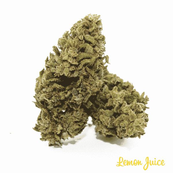 lemon juice 4