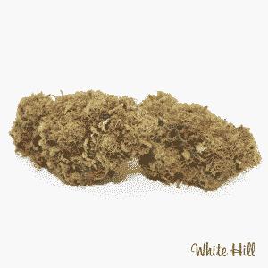white hill 2