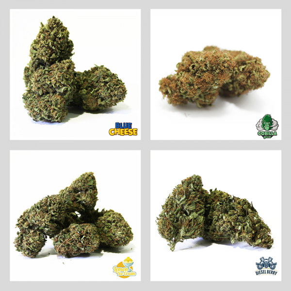 kit strong cannabis light