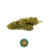 maria salvador marijuanalight