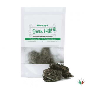 green hill bustina