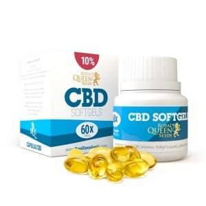 cbd softgel capsules 10