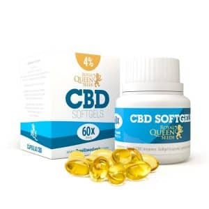 cbd softgel capsules 4