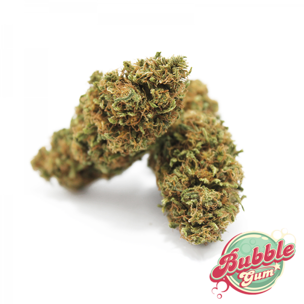 bubble gum marijuana light