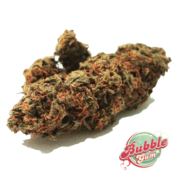 bubblegum cannabislight