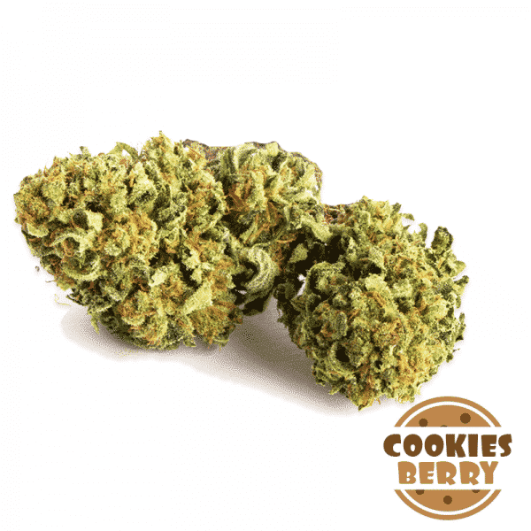 cookiesberry cannabis light