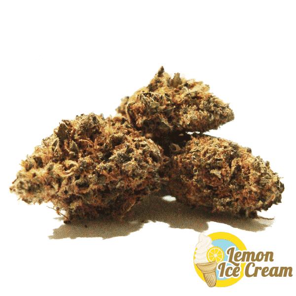 lemon icecream cannabis light