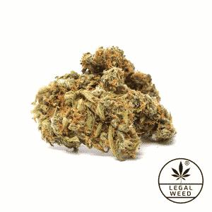 west santana legal weed