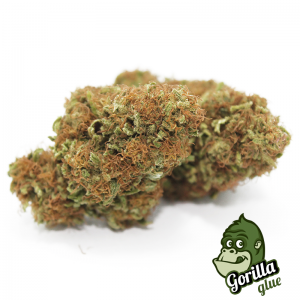 gorilla glue cannabis light